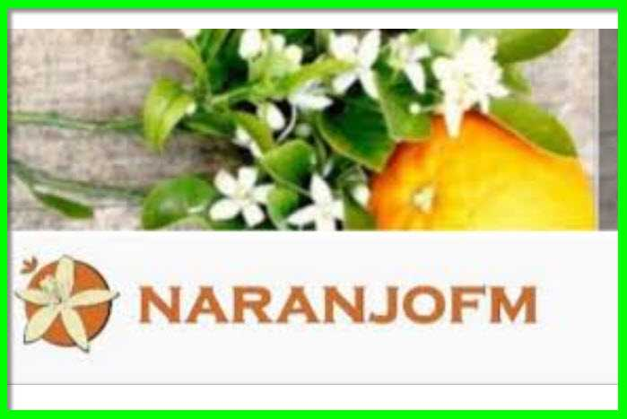 WhatsApp Contacto con Oyentes NaranjoFM